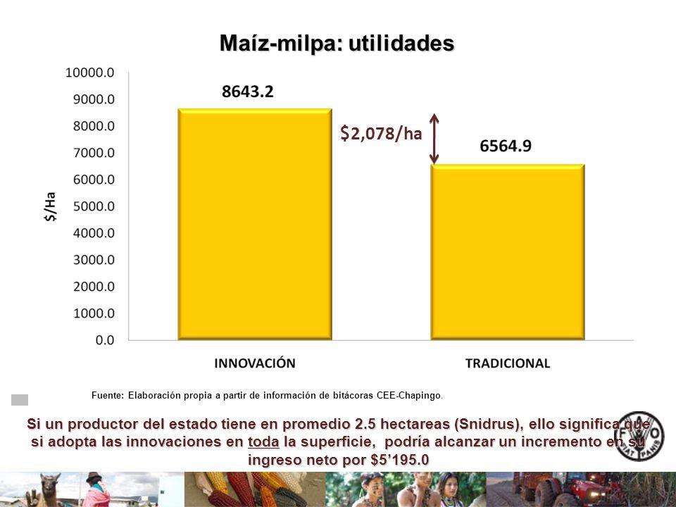 Maíz-milpa: utilidades Si un productor del estado tiene en promedio 2.5 hectareas (Snidrus), ello significa que si adopta las innovaciones en toda la