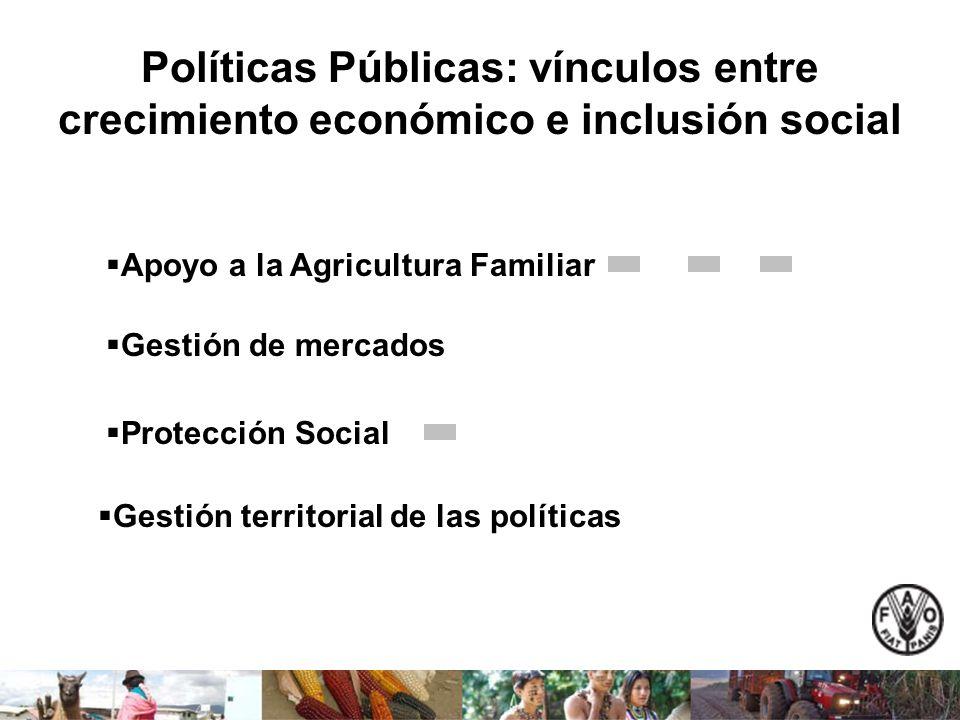 Políticas Públicas: vínculos entre crecimiento económico e inclusión social Apoyo a la Agricultura Familiar Gestión de mercados Protección Social Gest