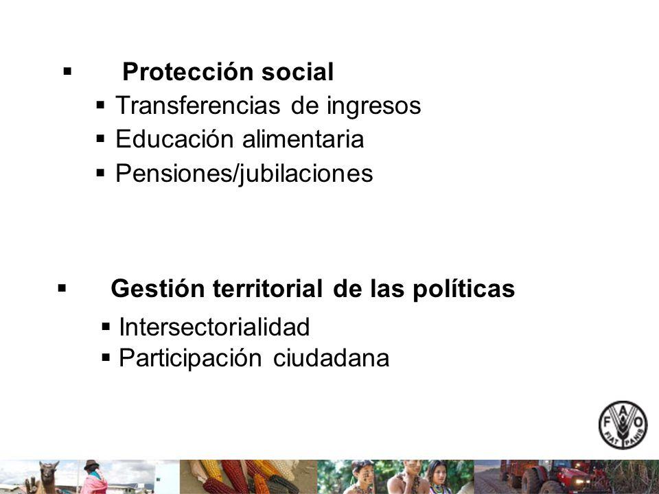 Protección social Transferencias de ingresos Educación alimentaria Pensiones/jubilaciones Gestión territorial de las políticas Intersectorialidad Part