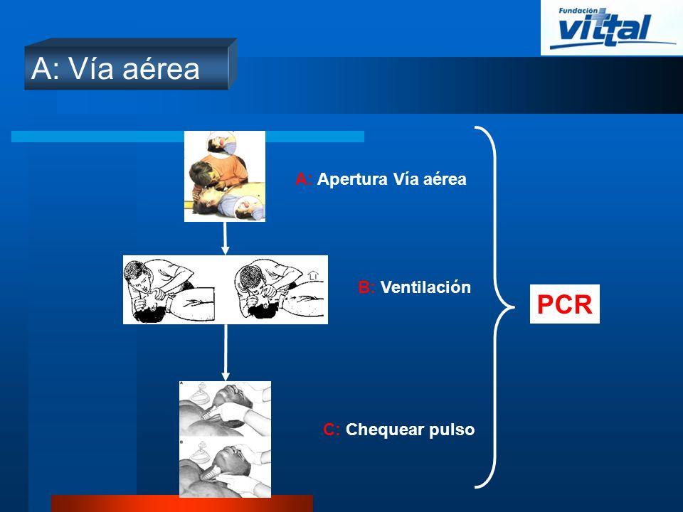 A: Vía aérea C: Chequear pulso B: Ventilación A: Apertura Vía aérea PCR