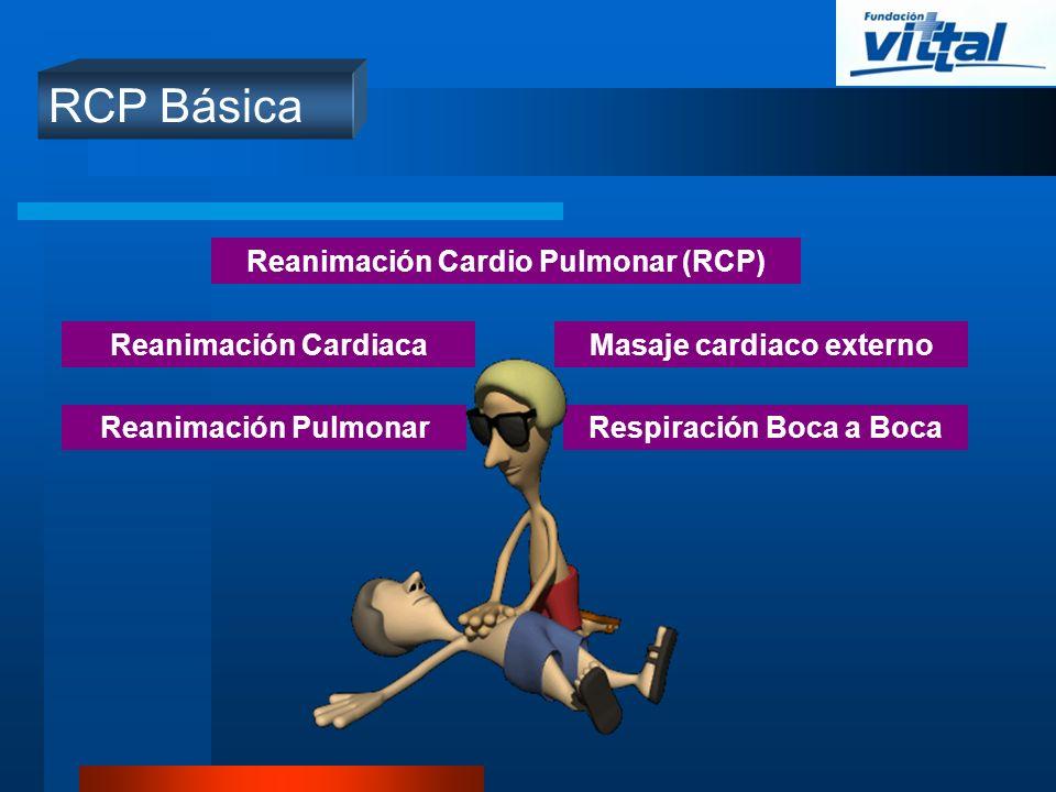 RCP Básica Reanimación Cardio Pulmonar (RCP) Reanimación Cardiaca Reanimación Pulmonar Masaje cardiaco externo Respiración Boca a Boca