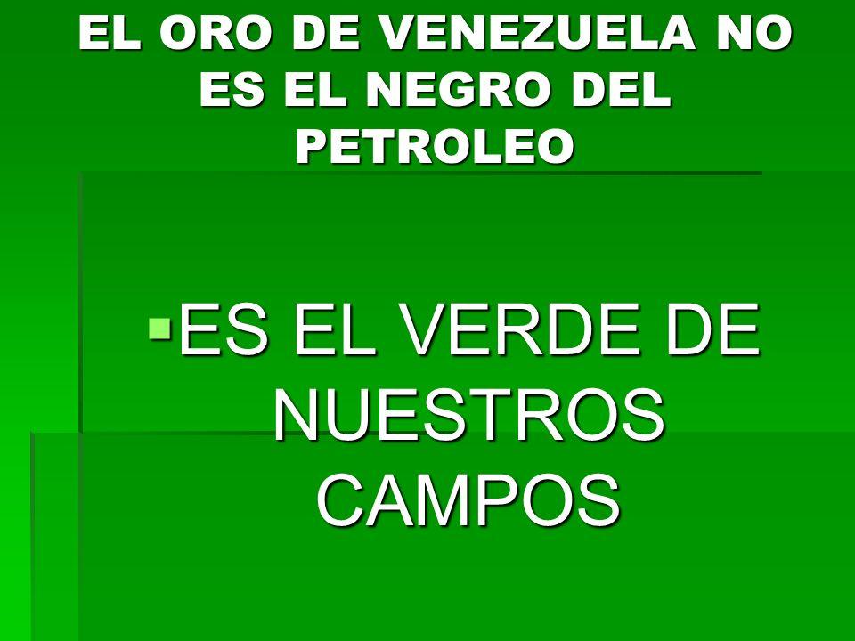 EL ORO DE VENEZUELA NO ES EL NEGRO DEL PETROLEO ES EL VERDE DE NUESTROS CAMPOS ES EL VERDE DE NUESTROS CAMPOS