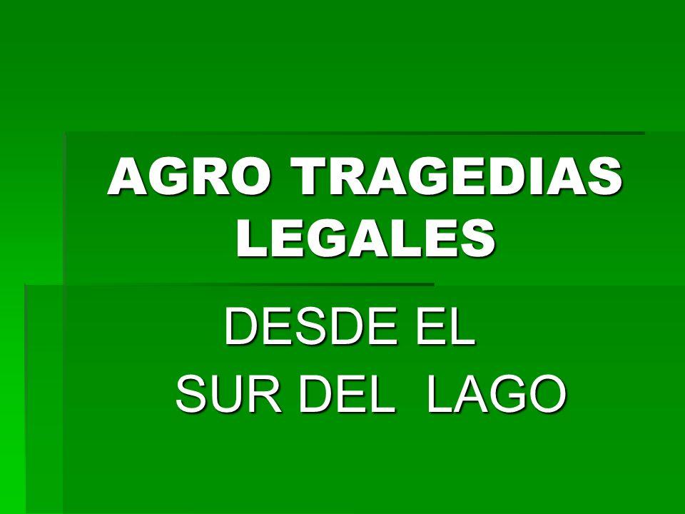 AGRO TRAGEDIAS LEGALES DESDE EL DESDE EL SUR DEL LAGO SUR DEL LAGO