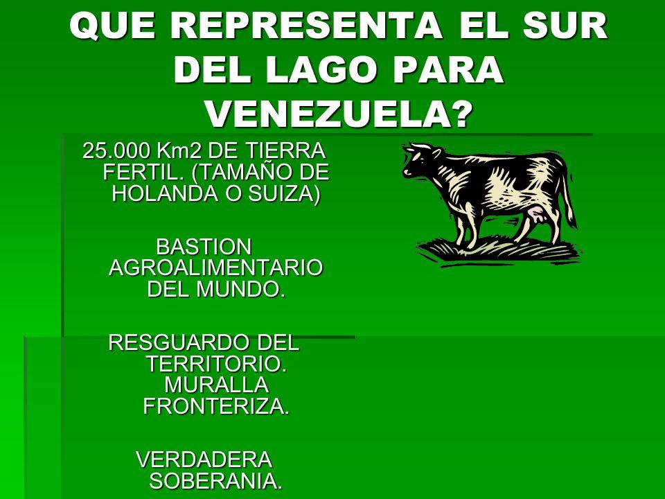 QUE REPRESENTA EL SUR DEL LAGO PARA VENEZUELA. 25.000 Km2 DE TIERRA FERTIL.