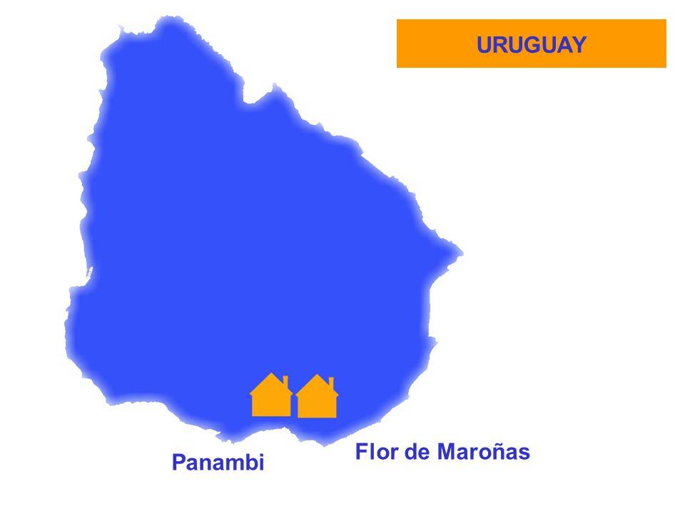URUGUAY Panambi Flor de Maroñas
