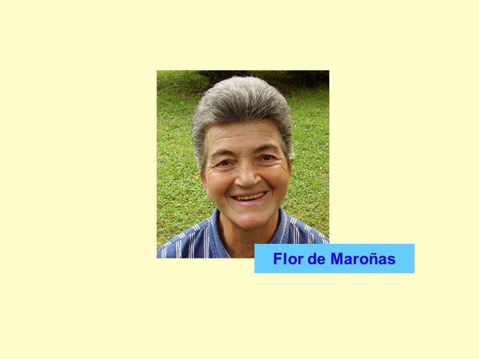 Flor de Maroñas