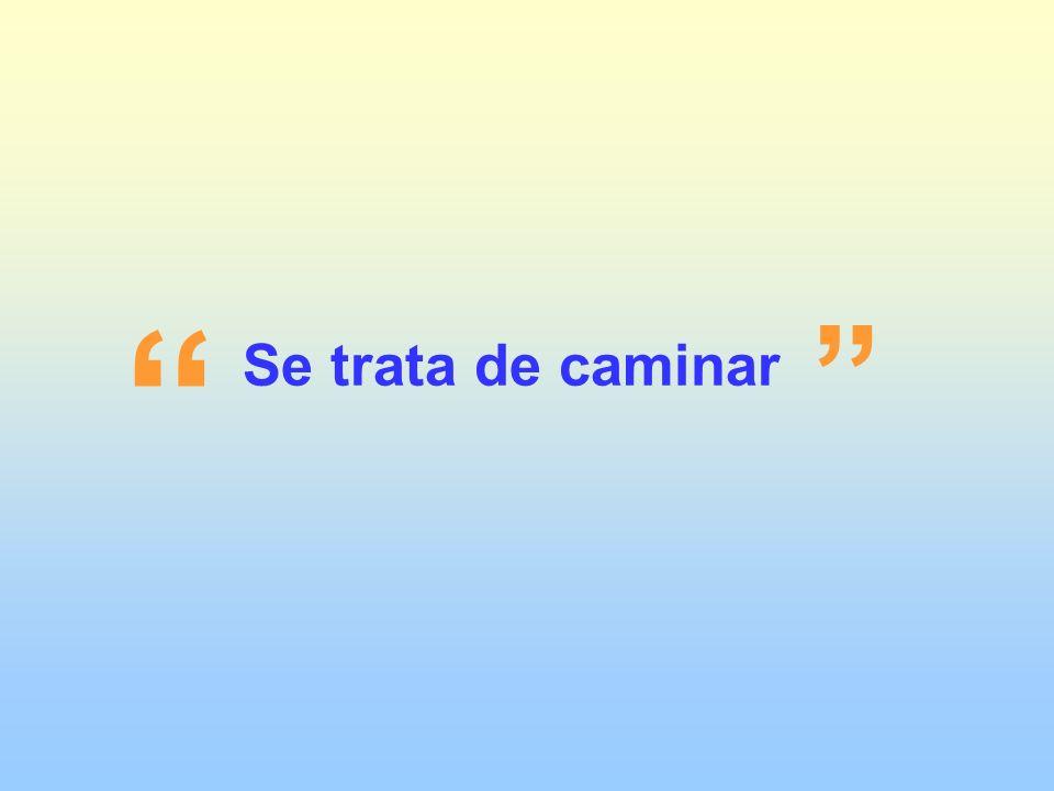 Carmen de Patagones
