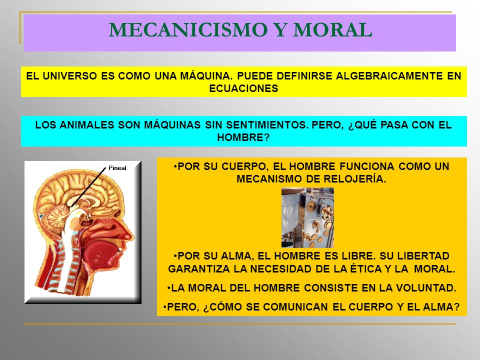 MECANICISMO Y MORAL EL UNIVERSO ES COMO UNA MÁQUINA.