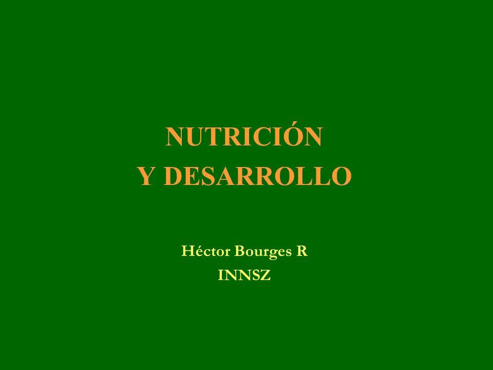 EL COSTO El desnutrido no cubre una necesidad fisiológica que debería estar siempre cubierta para así desarrollar el potencial con el que se nace.