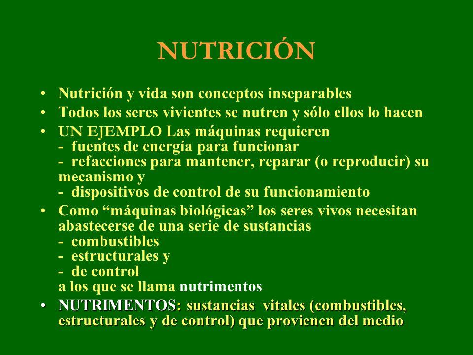 NUTRICIÓN El conjunto de procesos para - que el organismo se abastezca de nutrimentos - que cada célula los incorpore y - que cada célula los utilice constituye laEl conjunto de procesos para - que el organismo se abastezca de nutrimentos - que cada célula los incorpore y - que cada célula los utilice constituye la NUTRICIÓN Los animales obtienen los nutrimentos mediante la ingestión de alimentos ALIMENTACIÓN.Los animales obtienen los nutrimentos mediante la ingestión de alimentos ALIMENTACIÓN.
