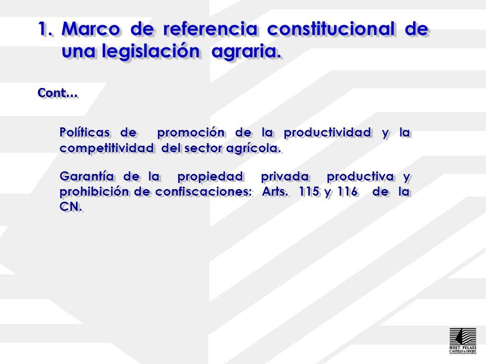1.Marco de referencia constitucional de una legislación agraria. Política de tierras integral: Art. 307 de la CN: Eliminación del régimen latifundista