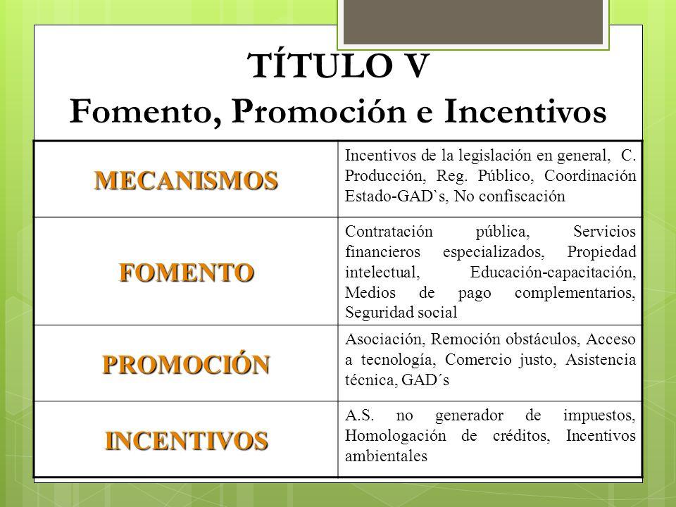 TÍTULO V Fomento, Promoción e Incentivos MECANISMOS Incentivos de la legislación en general, C. Producción, Reg. Público, Coordinación Estado-GAD`s, N