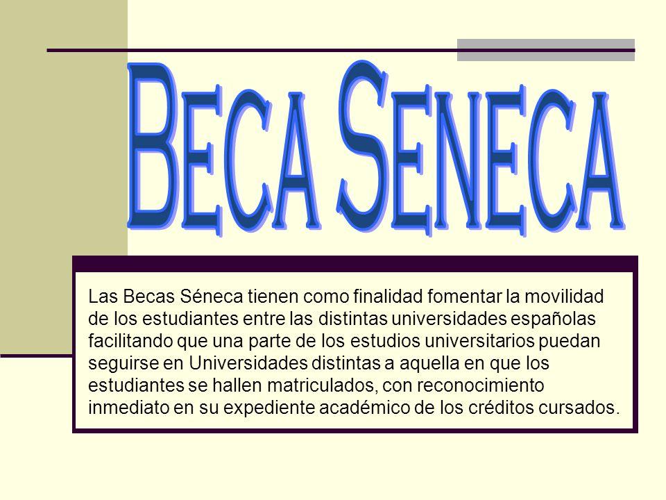 Las Becas Séneca tienen como finalidad fomentar la movilidad de los estudiantes entre las distintas universidades españolas facilitando que una parte