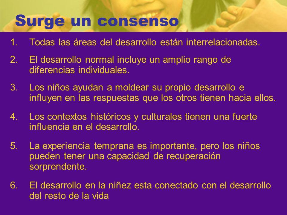 Surge un consenso 1.Todas las áreas del desarrollo están interrelacionadas.