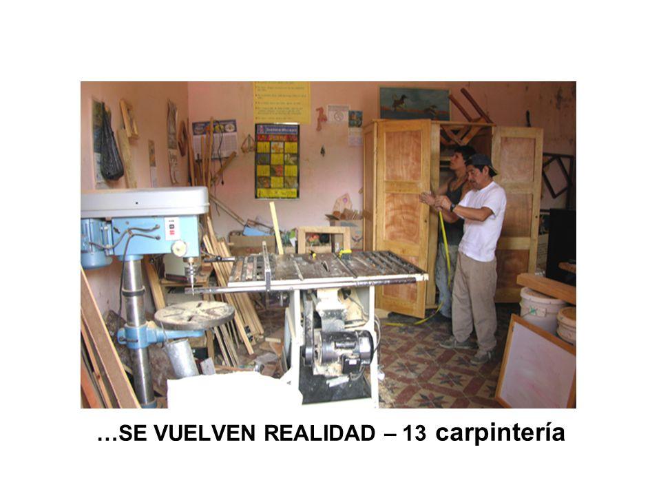 …SE VUELVEN REALIDAD – 13 carpintería