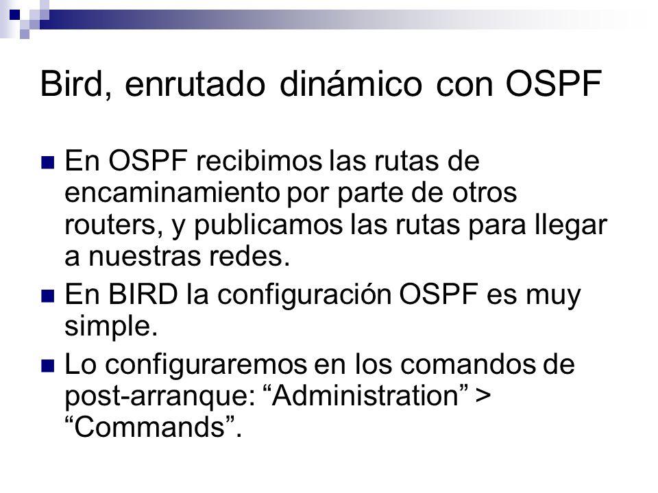 Bird, enrutado dinámico con OSPF En OSPF recibimos las rutas de encaminamiento por parte de otros routers, y publicamos las rutas para llegar a nuestr
