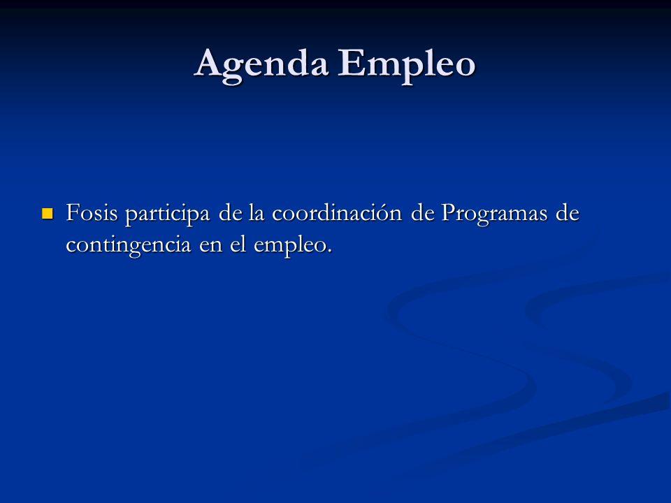 Agenda Empleo Fosis participa de la coordinación de Programas de contingencia en el empleo. Fosis participa de la coordinación de Programas de conting