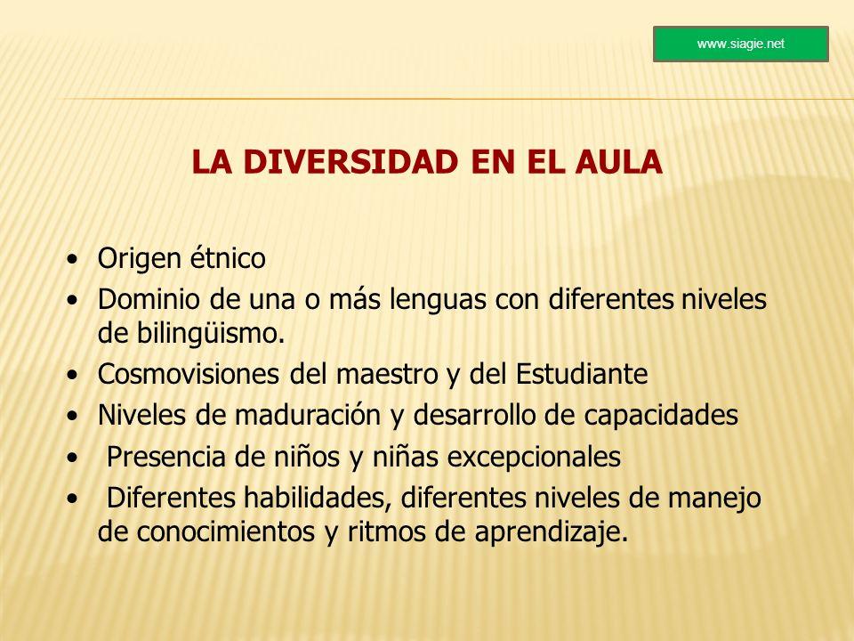 LA DIVERSIDAD EN EL AULA Origen étnico Dominio de una o más lenguas con diferentes niveles de bilingüismo. Cosmovisiones del maestro y del Estudiante