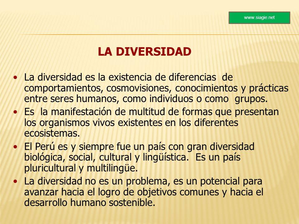 LA DIVERSIDAD La diversidad es la existencia de diferencias de comportamientos, cosmovisiones, conocimientos y prácticas entre seres humanos, como ind