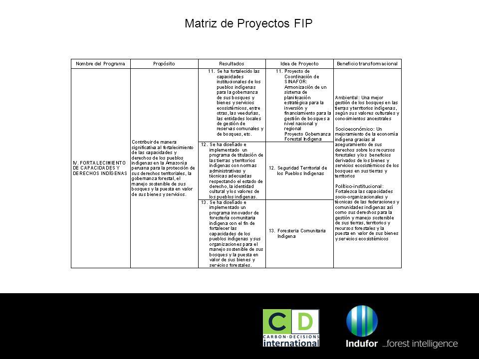 02/01/2014 Matriz de Proyectos FIP