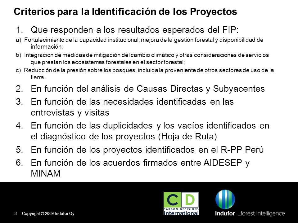 Criterios para la Identificación de los Proyectos 1.Que responden a los resultados esperados del FIP: a) Fortalecimiento de la capacidad institucional, mejora de la gestión forestal y disponibilidad de información; b) Integración de medidas de mitigación del cambio climático y otras consideraciones de servicios que prestan los ecosistemas forestales en el sector forestal; c) Reducción de la presión sobre los bosques, incluida la proveniente de otros sectores de uso de la tierra.