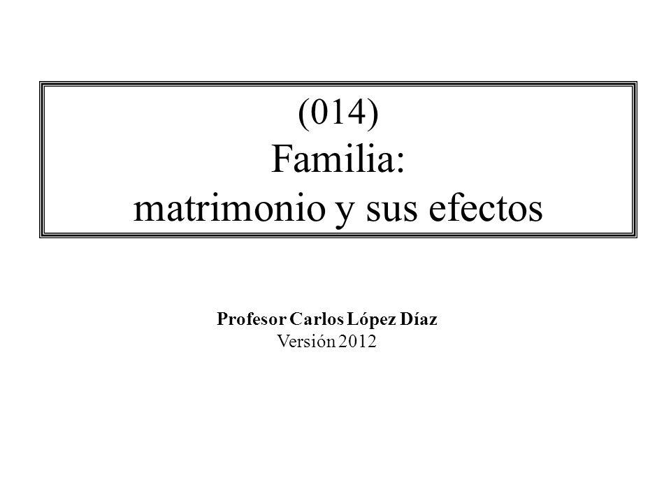 (014) Familia: matrimonio y sus efectos Profesor Carlos López Díaz Versión 2012