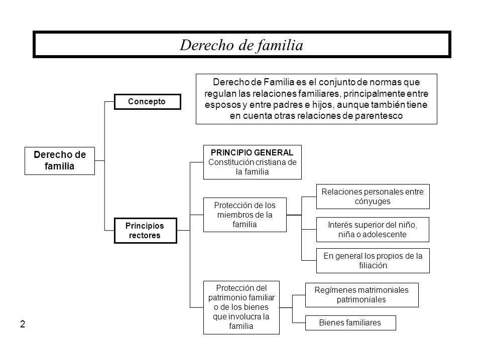 Derecho de familia Concepto Derecho de familia Principios rectores PRINCIPIO GENERAL Constitución cristiana de la familia Protección de los miembros d