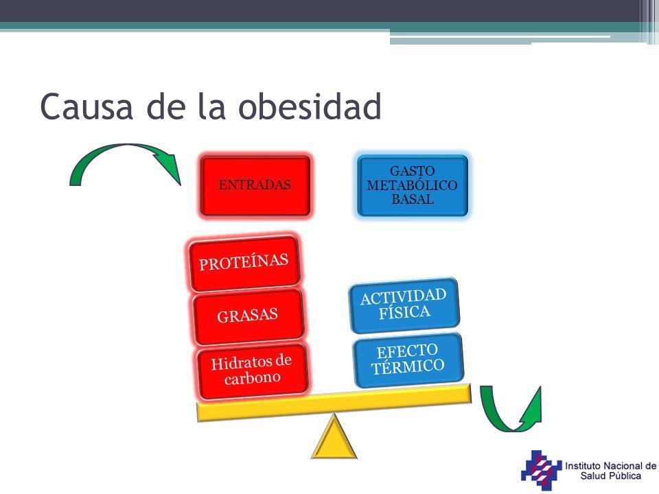 Alimentación dentro de las escuelas Los niños permanecen en las escuelas alrededor de cuatro horas y media Cinco o más oportunidades para comer Rivera, et al.