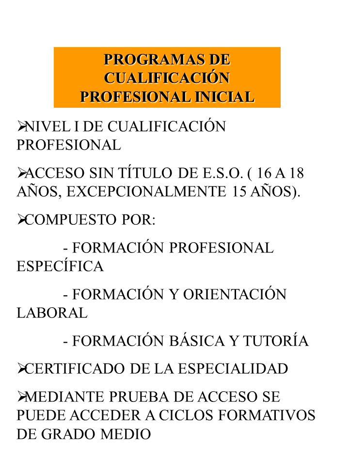 PROGRAMAS DE CUALIFICACIÓN PROFESIONAL INICIAL NIVEL I DE CUALIFICACIÓN PROFESIONAL ACCESO SIN TÍTULO DE E.S.O. ( 16 A 18 AÑOS, EXCEPCIONALMENTE 15 AÑ
