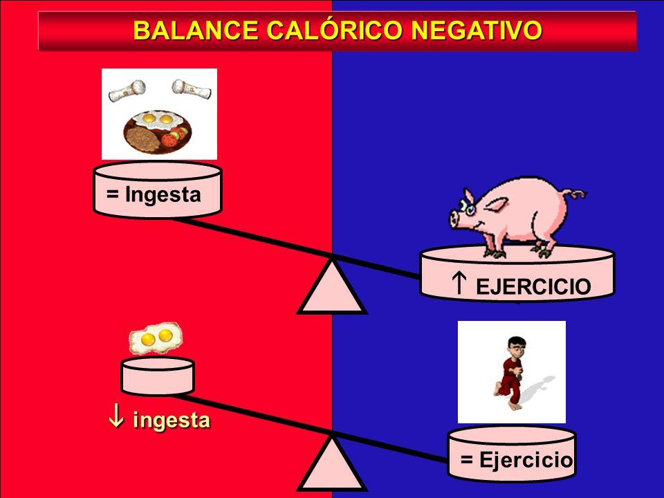 INGESTA = Ejercicio = Ingesta ejercicio ejercicio BALANCE CALÓRICO POSITIVO