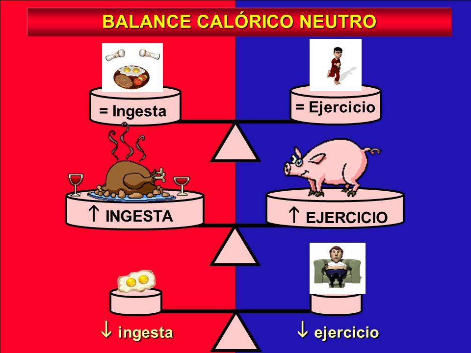 EJERCICIO = Ingesta = Ejercicio ingesta ingesta BALANCE CALÓRICO NEGATIVO