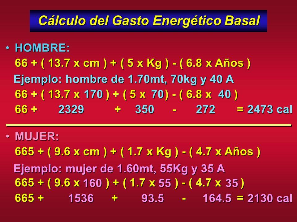 Gasto Energético Total ES LA SUMA DE: Gasto Energético Basal: es el 60-70% del total y lo determina la masa magra (músculo) Efecto térmico de los Alim
