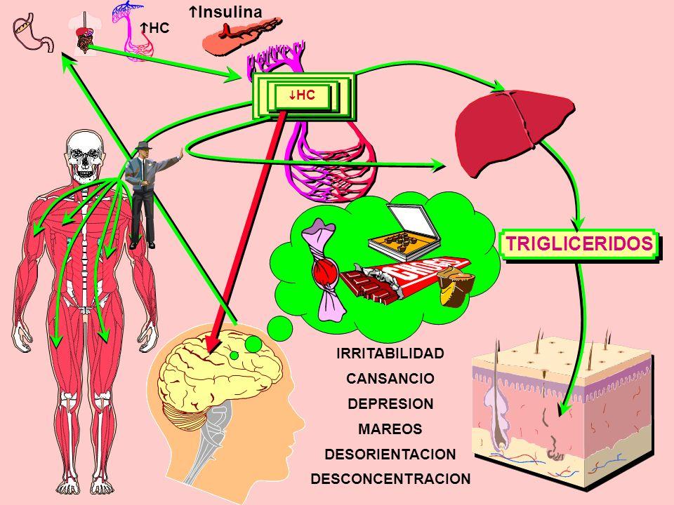 Insulina HC