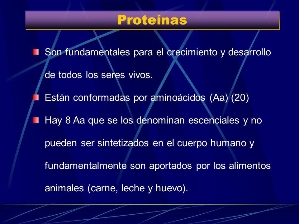 Dieta Adecuada Proteínas 0.8 gr/Kg/D + 1.75 gr de prot de alto valor biológico c/100 Kcal de déficit Pescado blanco, carnes blancas, lácteos descremad