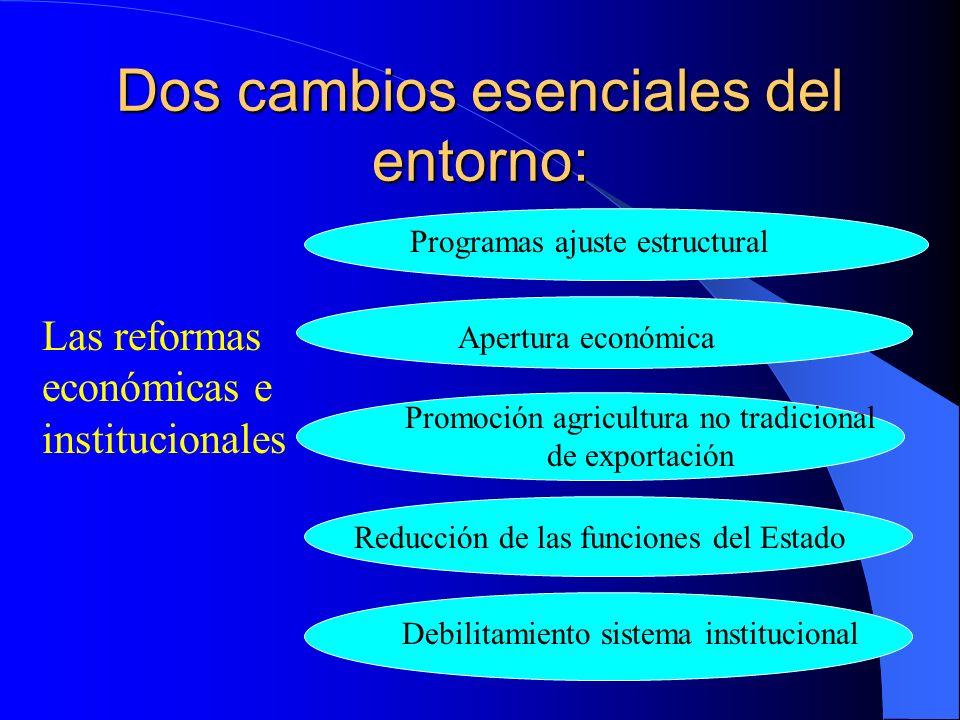 Dos cambios esenciales del entorno: Las reformas económicas e institucionales Programas ajuste estructural Apertura económica Promoción agricultura no tradicional de exportación Reducción de las funciones del Estado Debilitamiento sistema institucional
