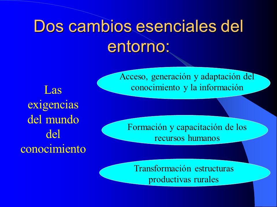 Dos cambios esenciales del entorno: Las reformas económicas e institucionales Programas ajuste estructural Apertura económica Promoción agricultura no