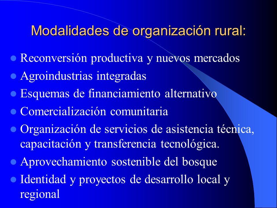 Modalidades de organización rural: Reconversión productiva y nuevos mercados Agroindustrias integradas Esquemas de financiamiento alternativo Comercialización comunitaria Organización de servicios de asistencia técnica, capacitación y transferencia tecnológica.