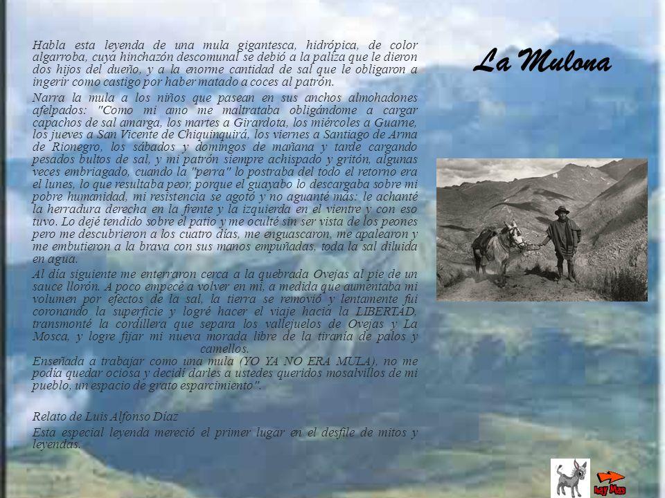 Habla esta leyenda de una mula gigantesca, hidrópica, de color algarroba, cuya hinchazón descomunal se debió a la paliza que le dieron dos hijos del d