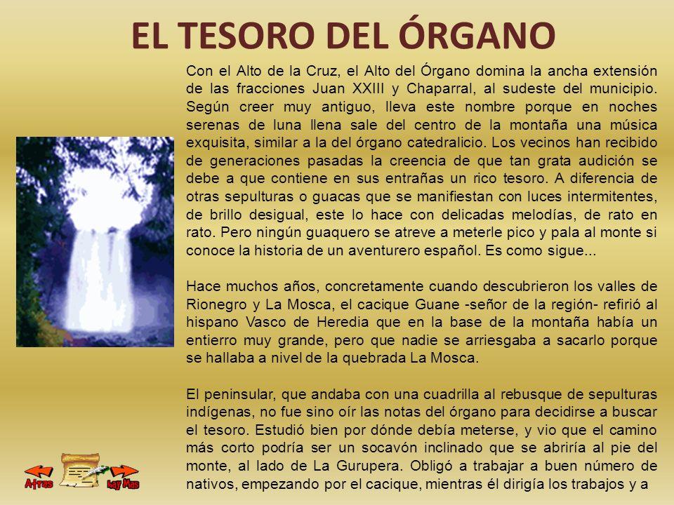 EL TESORO DEL ÓRGANO Con el Alto de la Cruz, el Alto del Órgano domina la ancha extensión de las fracciones Juan XXIII y Chaparral, al sudeste del mun