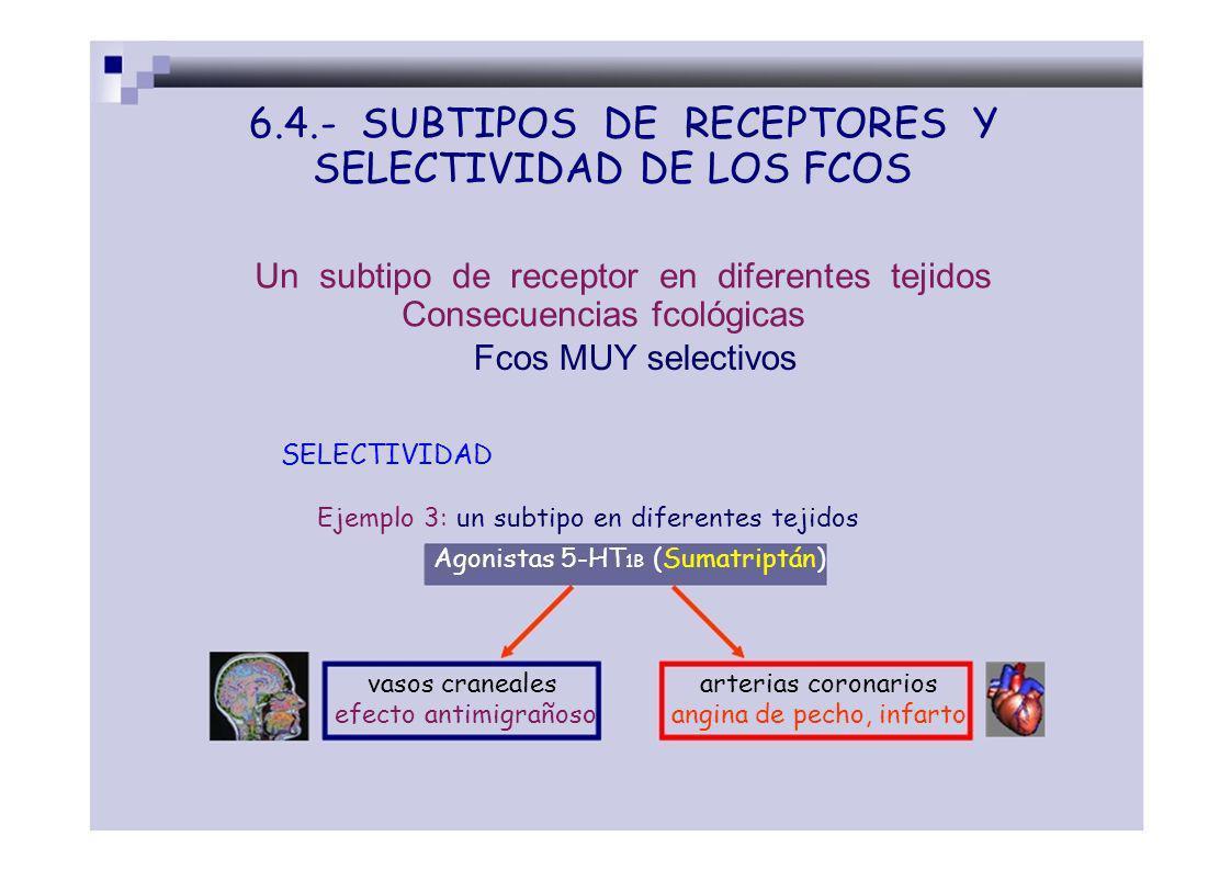 6.4.- SUBTIPOS DE RECEPTORES Y SELECTIVIDAD DE LOS FCOS Un subtipo de receptor en diferentes tejidos Consecuencias fcológicas Fcos MUY selectivos SELE