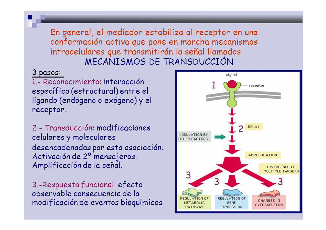 La mayoría de fcos actúan sobre receptores de mediadores endógenos del mismo modo que los propios mediadores estabilizando: AGONISTA la conformación ACTIVA, hay respuesta, AGONISTA reconocimientoANTAGONISTA AGONISTAS la conformación INACTIVA, no hay respuesta, ANTAGONISTAS cambio conformacional activo inactivo La conformación INACTIVA, respuesta opuesta a agonista, transducción de la señal AGONISTA INVERSO La conformación intermedia, acción respuesta intermedia Respuesta