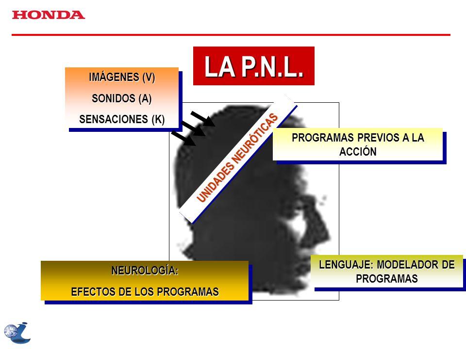 LA P.N.L. IMÁGENES (V) SONIDOS (A) SENSACIONES (K) IMÁGENES (V) SONIDOS (A) SENSACIONES (K) UNIDADES NEURÓTICAS PROGRAMAS PREVIOS A LA ACCIÓN LENGUAJE