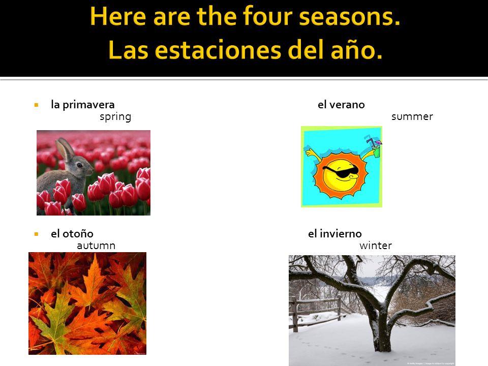 la primavera el verano spring summer el otoño el invierno autumn winter