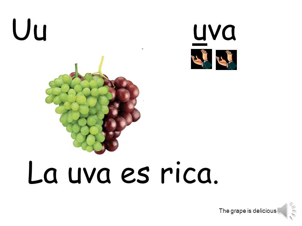 uva La uva es rica. The grape is delicious. Uu