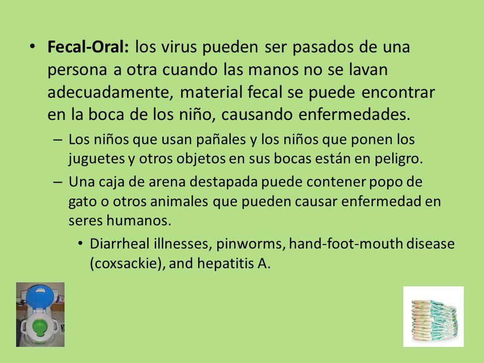 Fecal-Oral: los virus pueden ser pasados de una persona a otra cuando las manos no se lavan adecuadamente, material fecal se puede encontrar en la boc