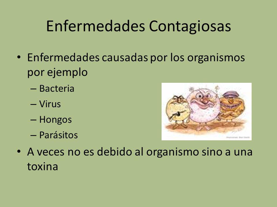 Enfermedades Contagiosas Enfermedades causadas por los organismos por ejemplo – Bacteria – Virus – Hongos – Parásitos A veces no es debido al organism