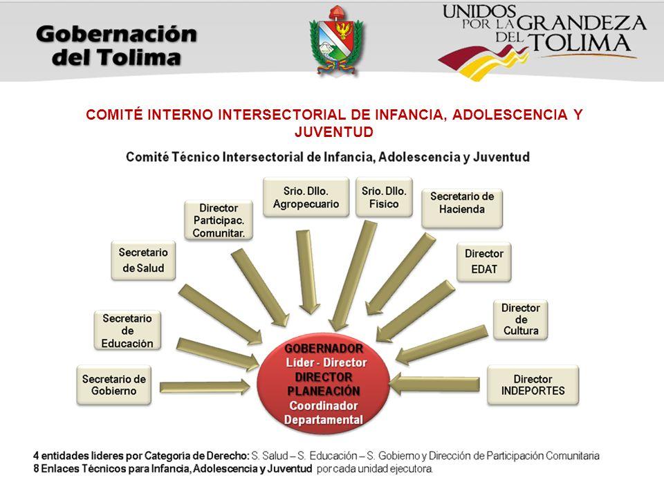 COMITÉ INTERNO INTERSECTORIAL DE INFANCIA, ADOLESCENCIA Y JUVENTUD