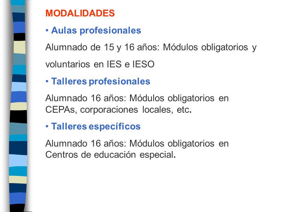 MODALIDADES Aulas profesionales Alumnado de 15 y 16 años: Módulos obligatorios y voluntarios en IES e IESO Talleres profesionales Alumnado 16 años: Módulos obligatorios en CEPAs, corporaciones locales, etc.