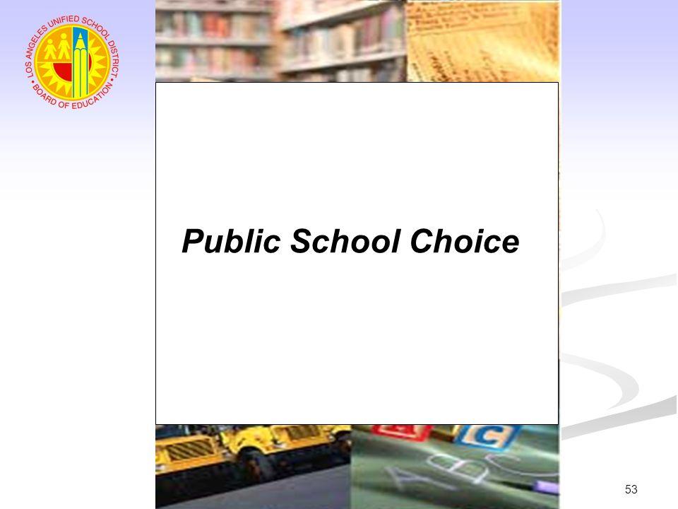 53 Public School Choice
