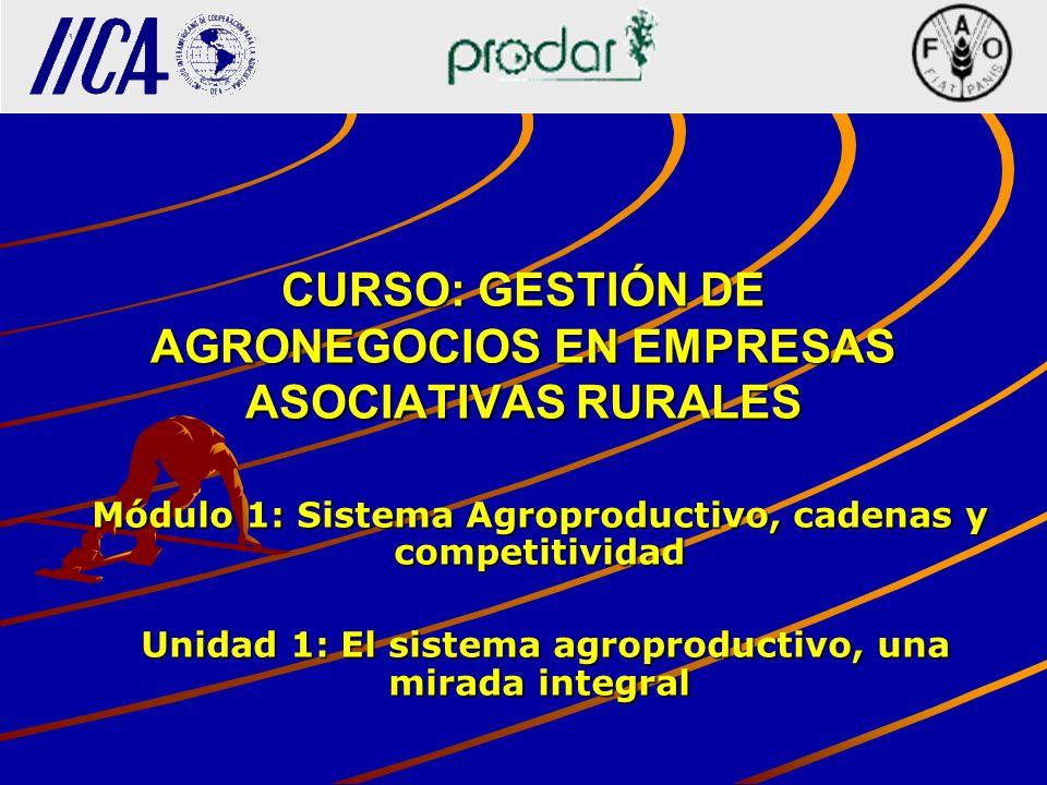 CURSO: GESTIÓN DE AGRONEGOCIOS EN EMPRESAS ASOCIATIVAS RURALES Módulo 1: Sistema Agroproductivo, cadenas y competitividad Unidad 1: El sistema agropro